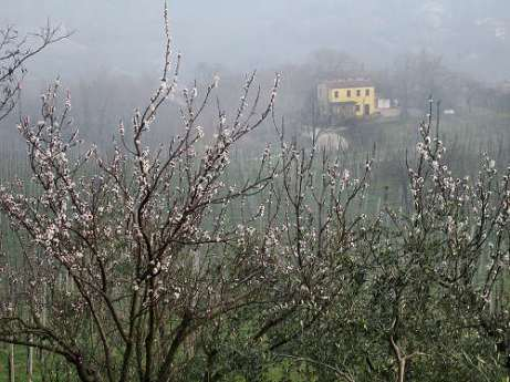 euganische Huegel Castelnuovo Wandern B&B